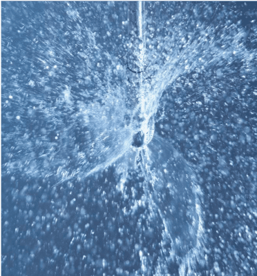Rotary spray head
